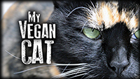 My Vegan Cat