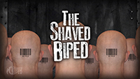 The Shaved Biped